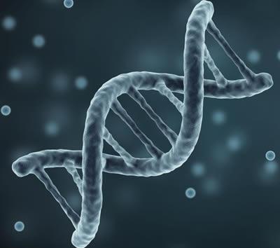 NHLS/Wits Human Genetic Division Established